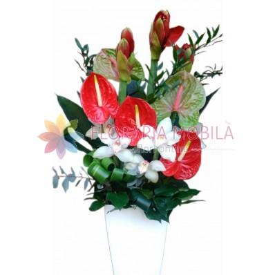 Aranjament orhidee, amarilis si anthurium