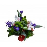 Aranjament iris, orhidee si anthurium