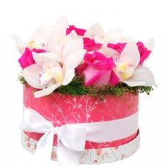 flori in cutii