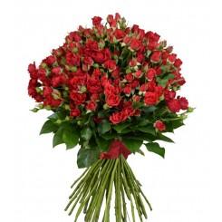 buchet trandafirasi rosii