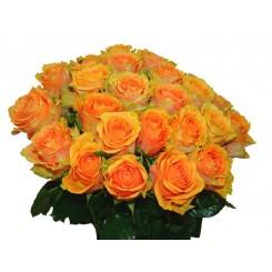 buchete trandafiri portocalii