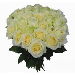 buchet 41 trandafiri albi