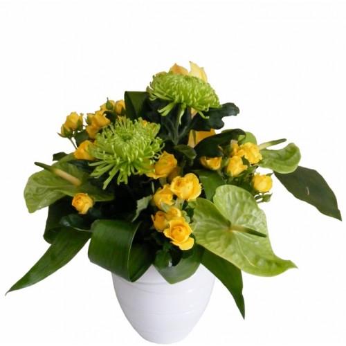 Aranjament din crizanteme, trandafirasi si anthurium