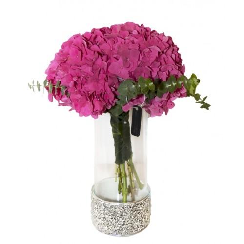 Hortensie in vaza cilindrica cu suport sticla detasabil Rose