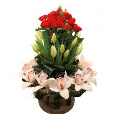Aranjament cu mini trandafiri, lalele, orhidee