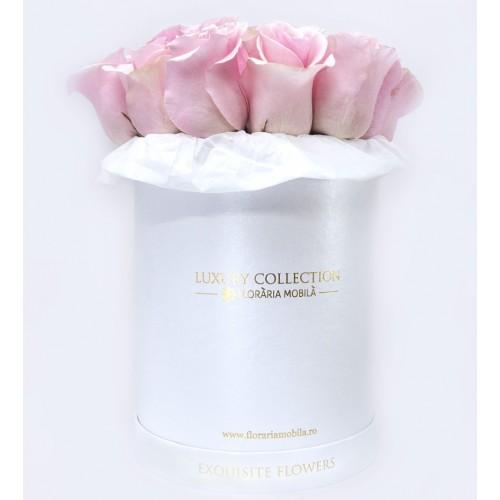 Trandafiri in Cutie Vintage Elegance